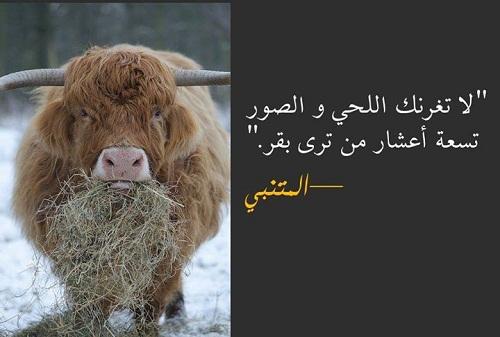 حكم واقوال أبو الطيب المتنبي مصورة