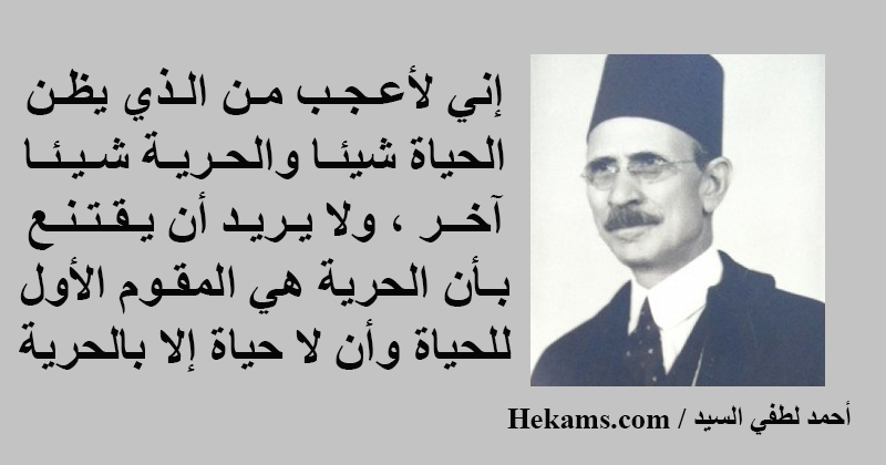 أقوال أحمد لطفي السيد