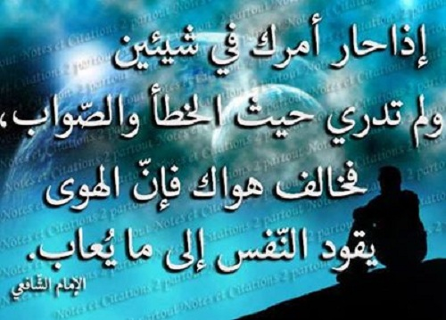 شعر الامام الشافعي عن التجاهل حكم