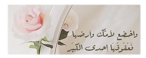 حكم واقوال الشافعي مصورة