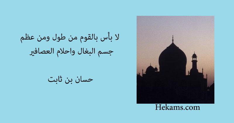 ديوان حسان بن ثابت - من اصدارات سلسلة جب التذكارية (1971 م)