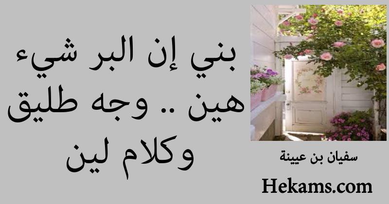أقوال سفيان بن عيينة