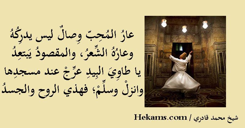 أقوال شيخ محمد قادري