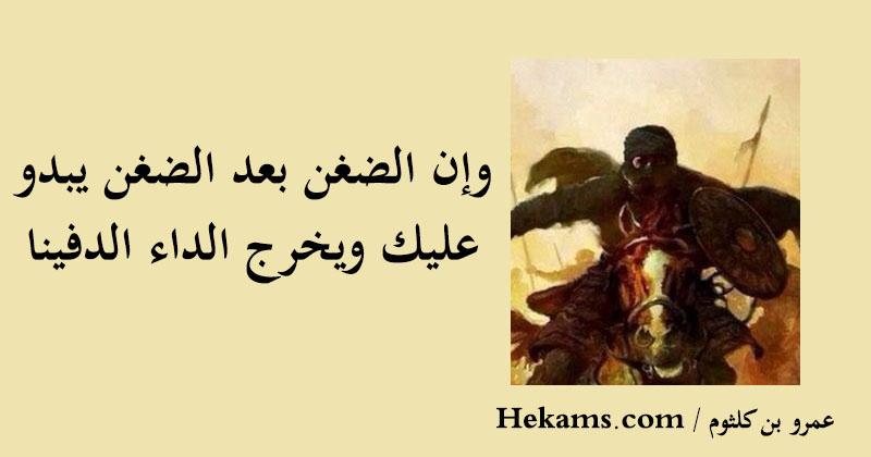 أقوال عمرو بن كلثوم