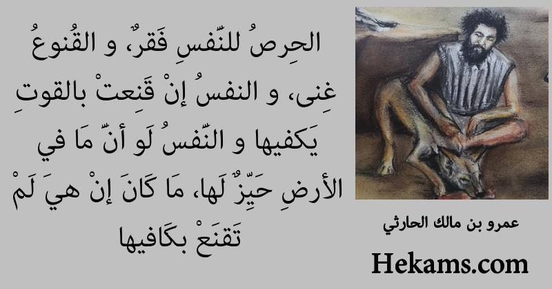 أقوال عمرو بن مالك الحارثي