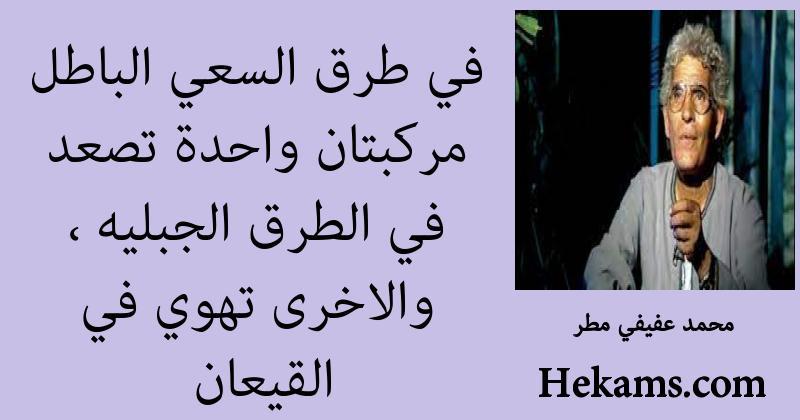 أقوال محمد عفيفي مطر