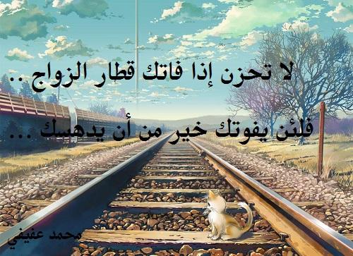 حكم واقوال محمد عفيفي