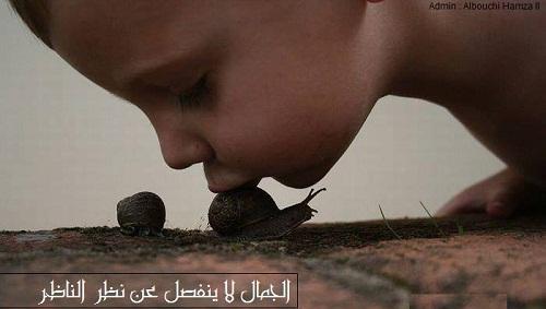حكم واقوال هاينز باجلز مصورة